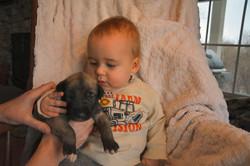 puppies_3wk (3).JPG