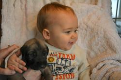 puppies_3wk (2).JPG