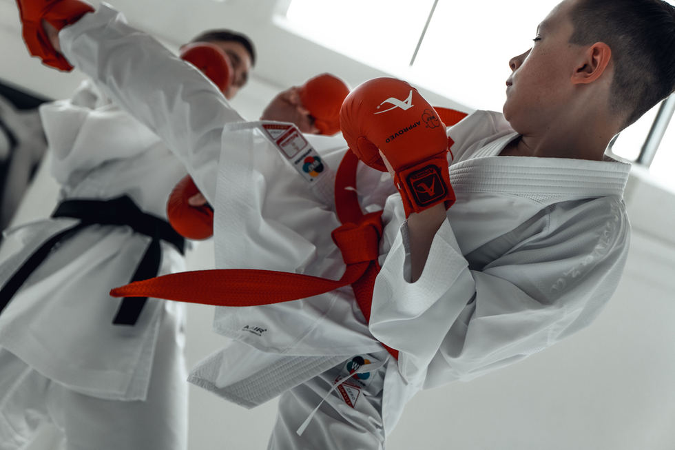 Karate Infight
