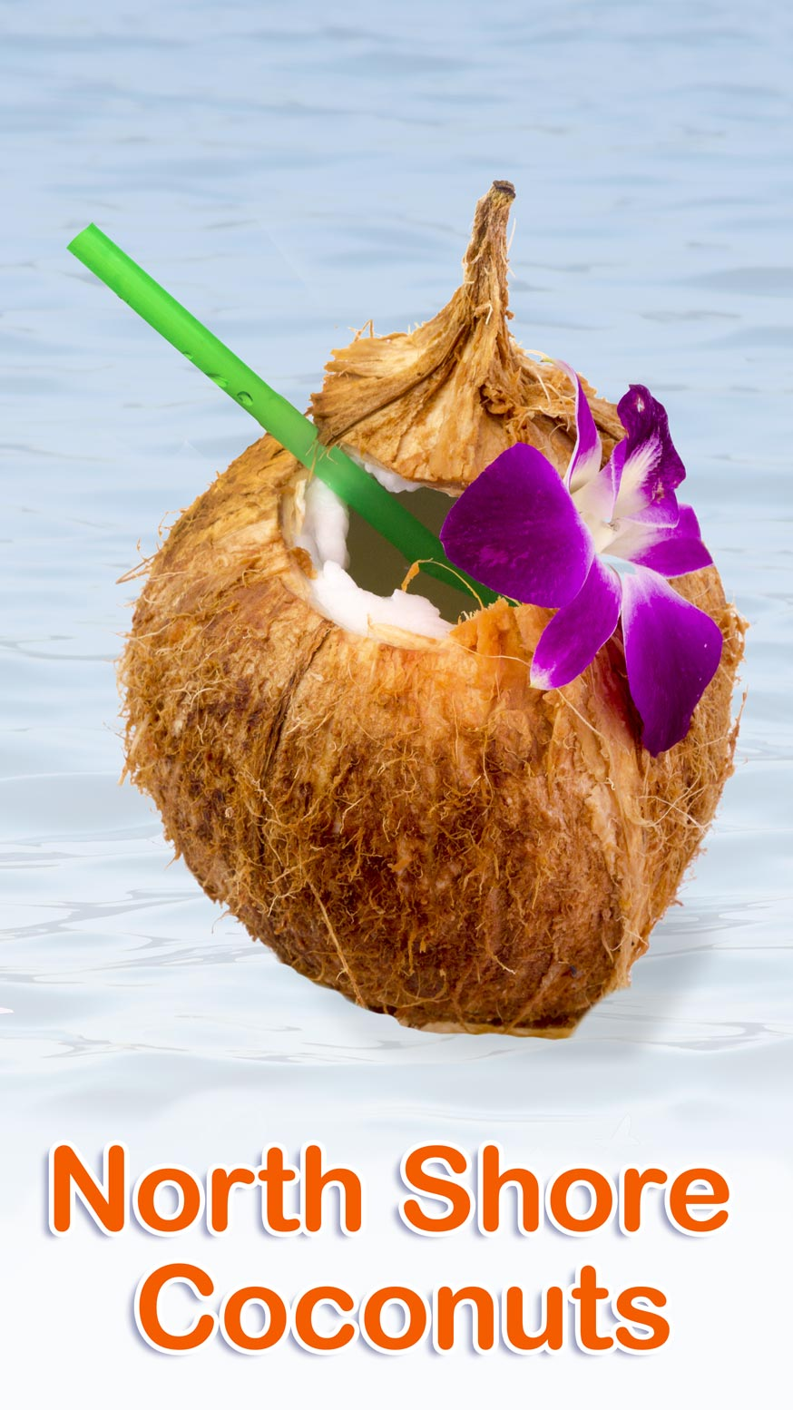North Shore Coconut