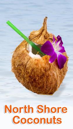 North Shore Coconut