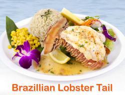 Brazilian Rock Lobster