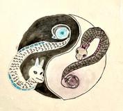 Yin and Yang Dragons