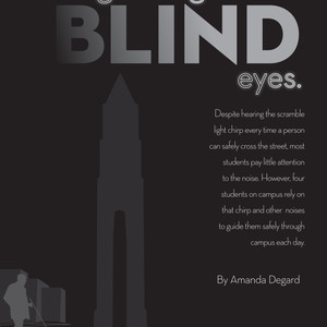 Blind-1.jpg