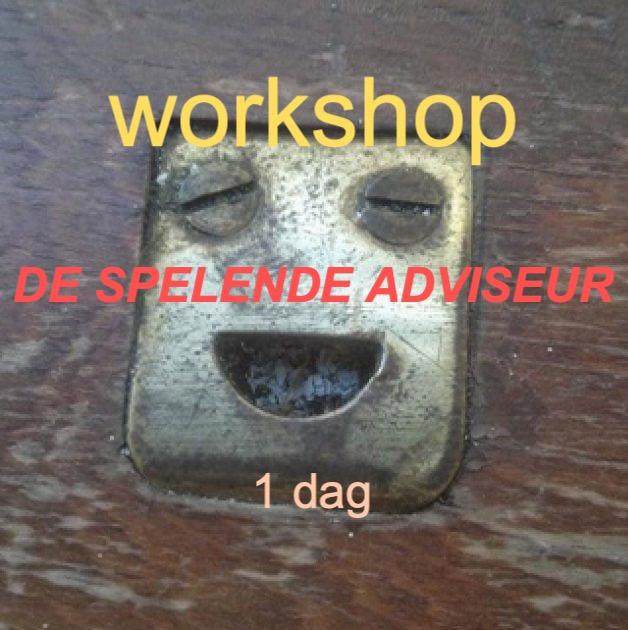 De Spelende Adviseur workshop