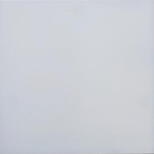 Granito Rıno - 60X60 Saten Beyaz R ( Mat )