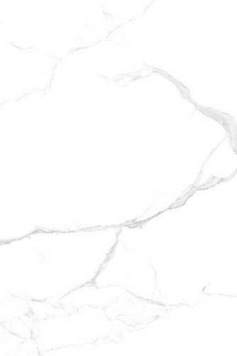 Arte Seramik - 60X120 Neo Calacatta Sılver ( Parlak )