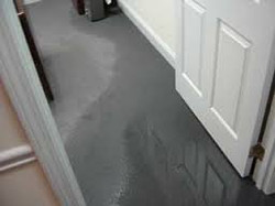 Hydro Water Damage Clean Up