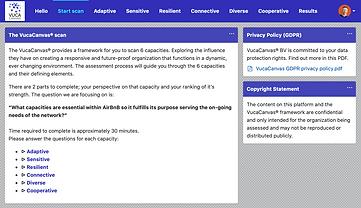 Example online survey VucaCanvas