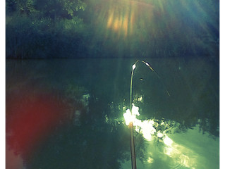 A summers evening fishing