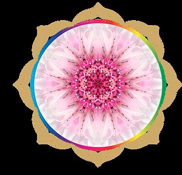 mandala rainbow circles 296.png