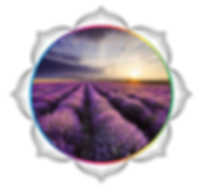 mandala rainbow circles 2197.png