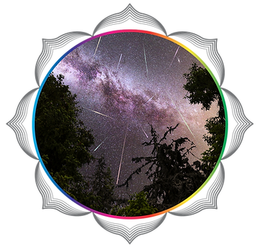 be flower of life circles v214.png