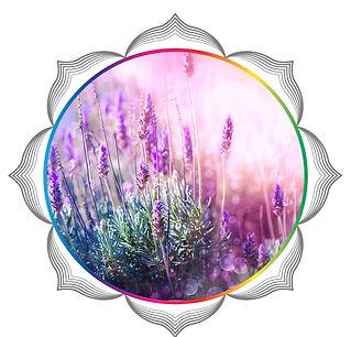 mandala rainbow circles41.jpg