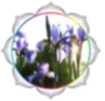 mandala rainbow circles42.jpg