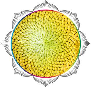 mandala rainbow circles54.jpg