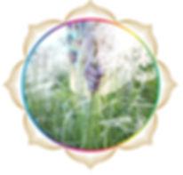 mandala rainbow circles 218.jpg