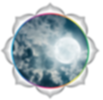 be flower of life circles v240.png