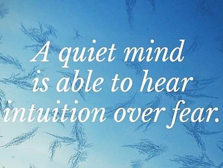 Kaya: A Quiet Mind