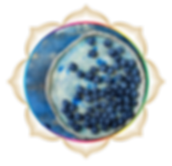mandala rainbow circles 25.png