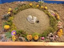 art nature sand mandala.jfif