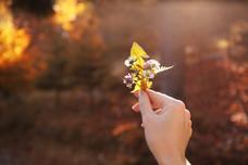 bigstock-Woman-Holding-Wild-Flowers-In--