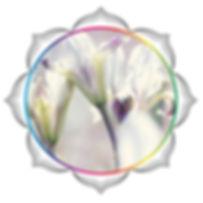 mandala rainbow circles 234.jpg