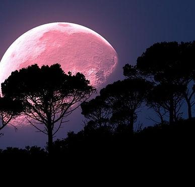 super-pink-moon.jpg
