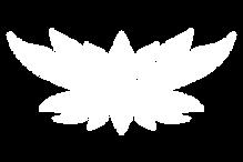 lotus5.png