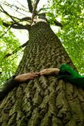 orientation tree hug.jpg