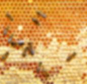 bigstock--142967240.jpg