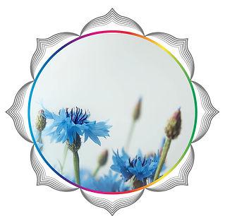 mandala rainbow circles37.jpg