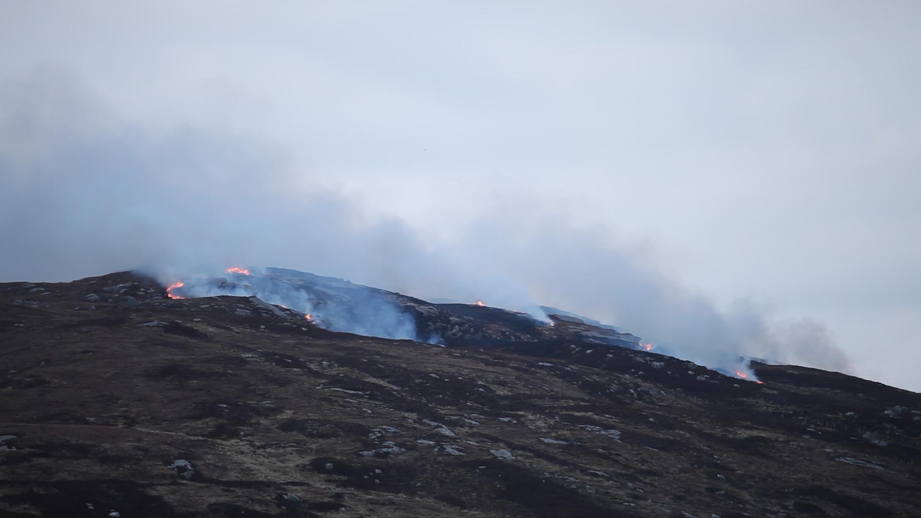 Burning the heather