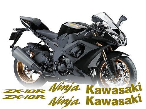 Kawasaki Ninja ZX-10R Set