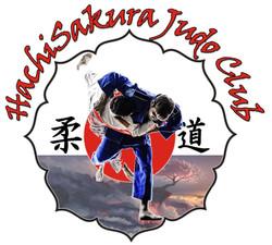 HSJ Logo Full_02_JPG