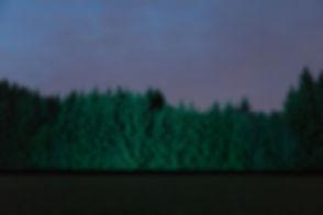 GlobalForest_dualsession_30_Photo_Anatol