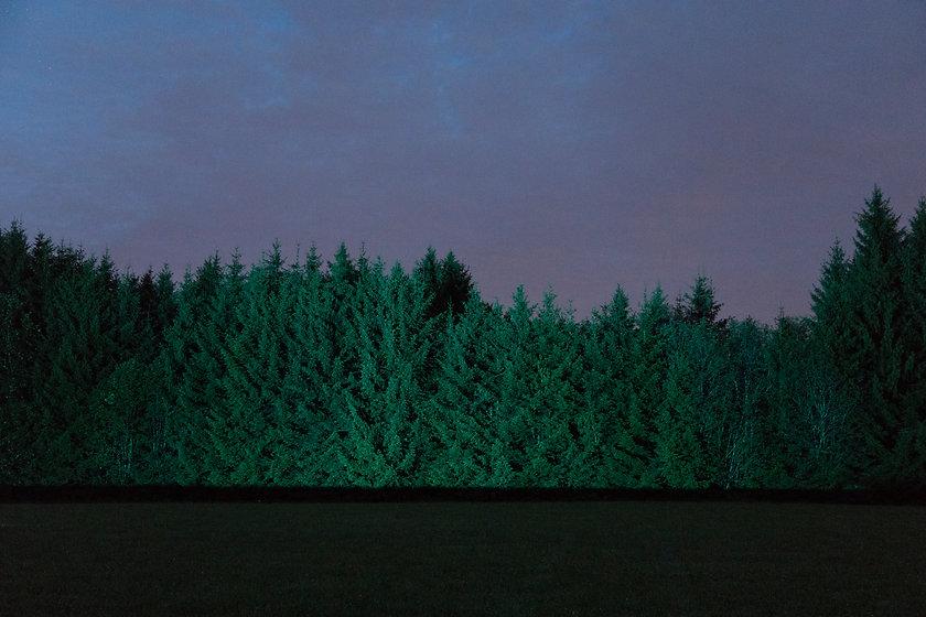 GlobalForest_dualsession_30_Photo_Anatole_Serexhe.jpg