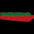 MARCHIO delfino verde.png
