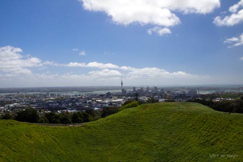 Mont Eden, Auckland