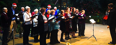 Carols at the Sheffield Winter Gardens