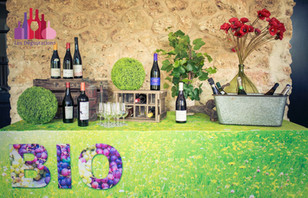 degustations-tendances-vins-bio