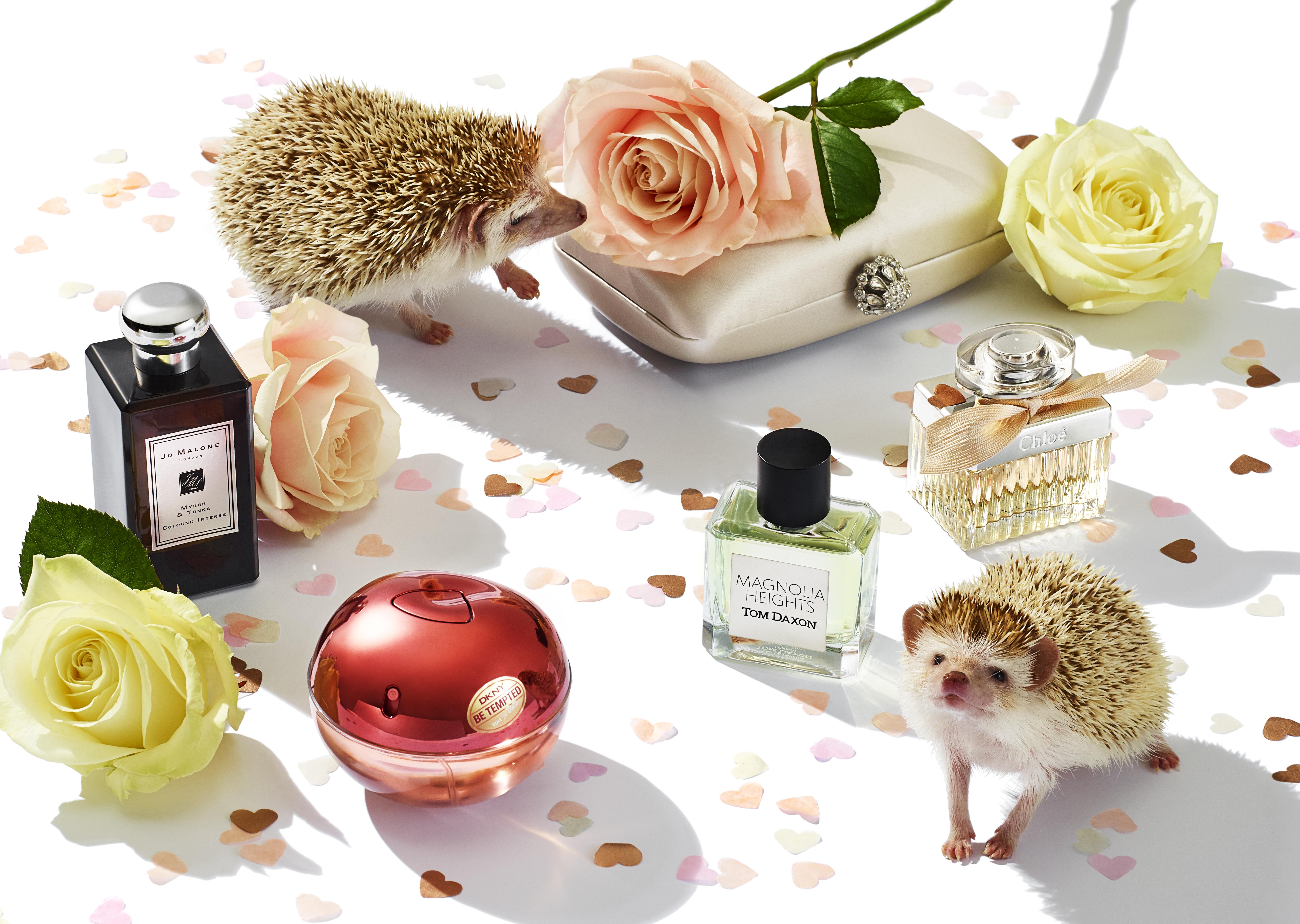 Valentines fragrance