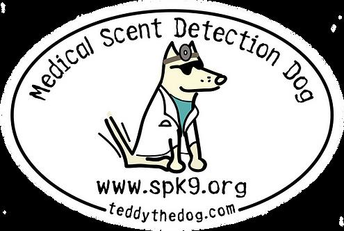 Dr. Teddy Fridge Magnet