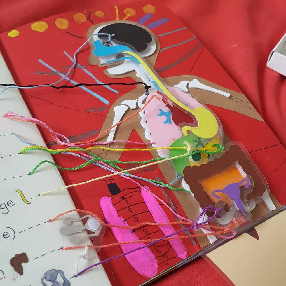 livre interactif du corps humain