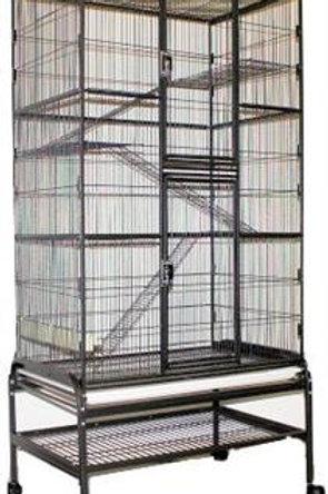 Brisbane Cage