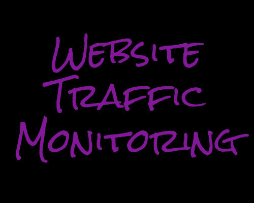 Website Traffic Monitoring