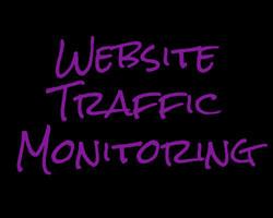 Website Traffic Monitoring