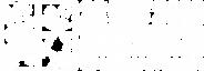 idb-2020-logo-en-wht.png