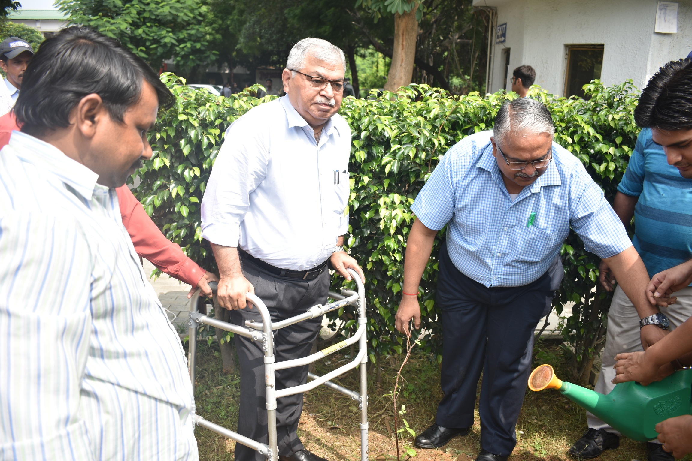 Tree plantation by our Principal