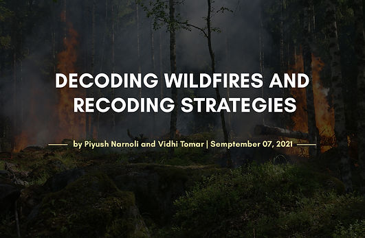 DECODING WILDFIRES AND RECODING STRATEGIES.jpg